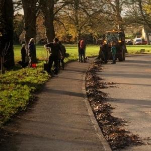 People litter picking beside village green